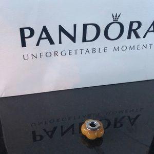 Pandora Caramel Wood Charm